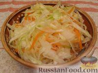 Фото к рецепту: Соленая капуста в рассоле