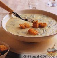 Фото к рецепту: Картофельный суп-пюре с рукколой