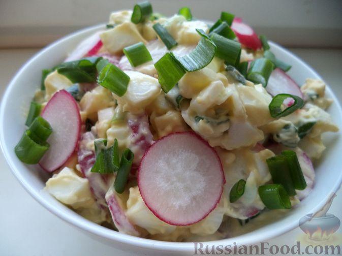 салат из кальмаров редиски рецепт с фото