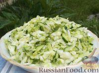Фото к рецепту: Салат из свежей капусты с огурцами
