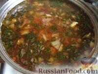 Фото приготовления рецепта: Щи из свежей капусты (классический рецепт) - шаг №15