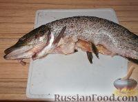 Фото приготовления рецепта: Щука запеченная - шаг №2
