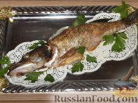 Фото приготовления рецепта: Щука запеченная - шаг №6