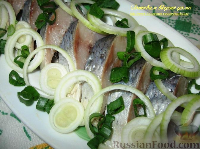 Народный рецепт от больных суставов бульон из рыбьих голови камфорное маслом и водкой