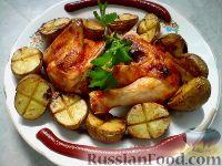 Фото к рецепту: Курица в духовке с картошкой
