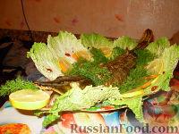 Фото к рецепту: Фаршированная щука