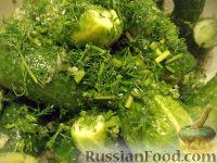Фото к рецепту: Малосольные огурчики без рассола