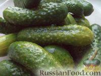 Фото приготовления рецепта: Засолка огурцов в банках - шаг №2