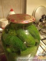 Фото приготовления рецепта: Засолка огурцов в банках - шаг №8