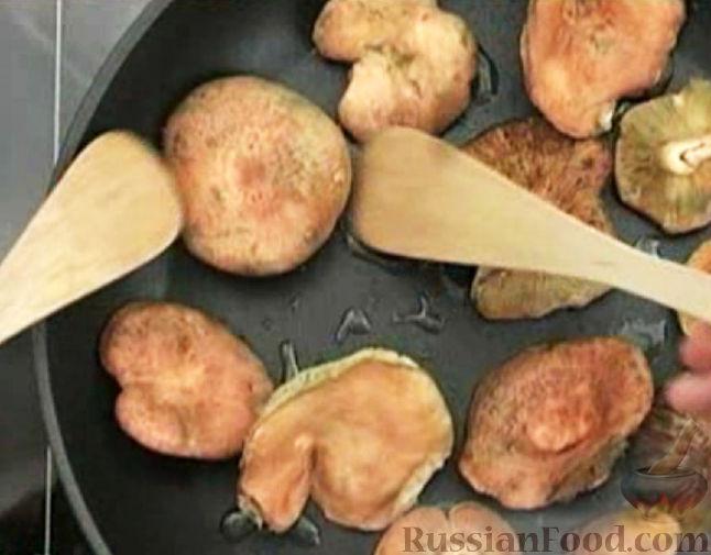 Грибы рыжики описание как готовят рецепты приготовления