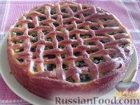 Фото к рецепту: Пирог из творожного теста с зеленым луком, грибами и яйцами
