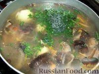 Фото приготовления рецепта: Суп из замороженных грибов - шаг №12