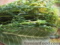 Фото приготовления рецепта: Простой способ закатки помидоров-1 - шаг №3