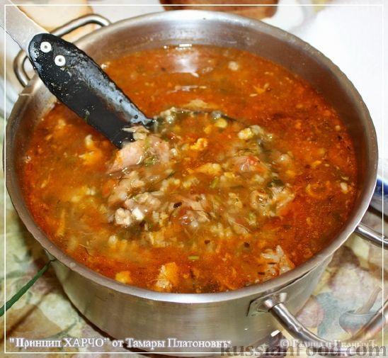 Пошаговый рецепт приготовления супа харчо