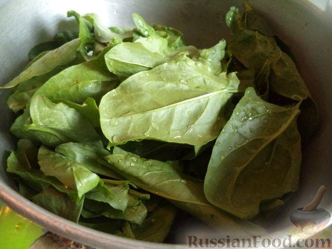 Как приготовить зеленый борщ с щавелем