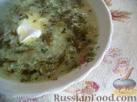 Фото к рецепту: Зеленый борщ с щавелем без мяса