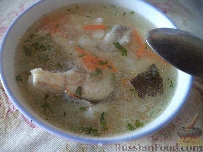 рыбный суп рецепт с жабрами