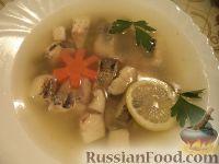 Фото к рецепту: Заливное из судака