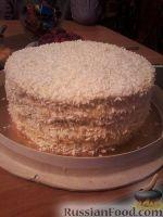 Фото к рецепту: Маковый торт