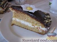 Торт морковный, рецепты с фото на: 49 рецептов морковного торта