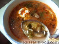 Рецепт приготовления солянки с консервированными грибами