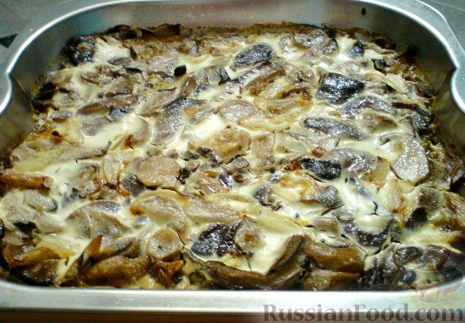 Вешенки на мангале пошаговый фото рецепт