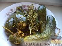 Фото к рецепту: Огурцы малосольные (Рецепт №2)