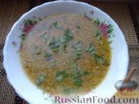 Фото к рецепту: Сырный суп с грибами и овсянкой