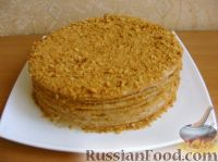 как приготовить медовый торт в домашних условиях рецепт