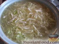 Щи со свежей капустой на говяжьей косточке - рецепт пошаговый с фото