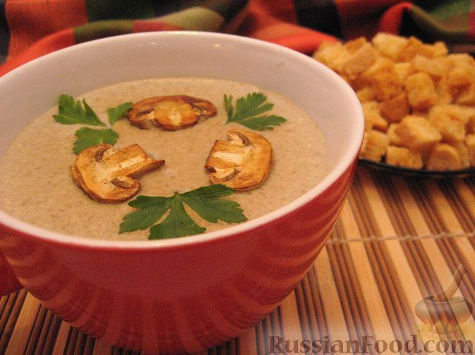 суп пюре из сморчков фото рецепт