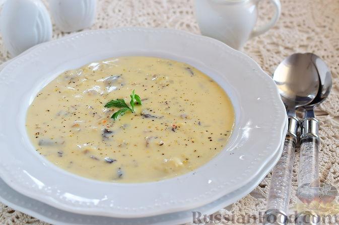 Грибной суп со сливками рецепты
