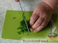 Фото приготовления рецепта: Соленые сырники с кабачком и укропом - шаг №4