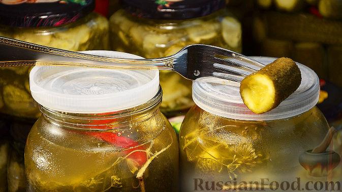 Огурцы с горчицей, рецепты с фото на RussianFood.com: 31 ...