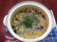 Фото приготовления рецепта: Куриный суп с шампиньонами и баклажанами - шаг №17