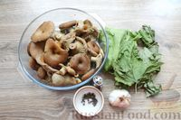 Фото приготовления рецепта: Солёные волнушки (на зиму) - шаг №4