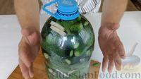 Фото приготовления рецепта: Огурцы в бутылке (быстрый способ засолки огурцов на зиму) - шаг №7