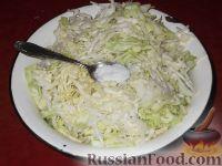 Фото приготовления рецепта: Салат из свежей капусты с огурцами - шаг №3