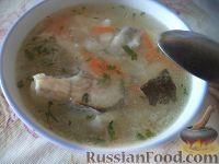 Фото к рецепту: Рыбный суп (из судака)