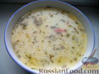 Фото к рецепту: Сырный суп пофранцузски, с курицей