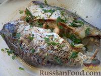 Фото к рецепту: Скумбрия, запеченная с луком (в микроволновке)