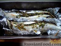 Фото к рецепту: Изысканная скумбрия в духовке